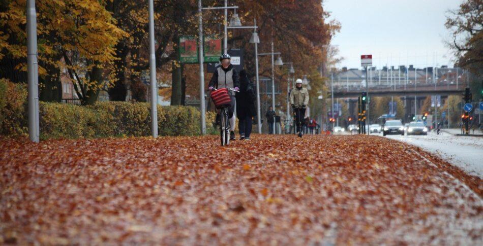 Hösten – då nollvisionen visar långfingret åt cyklister