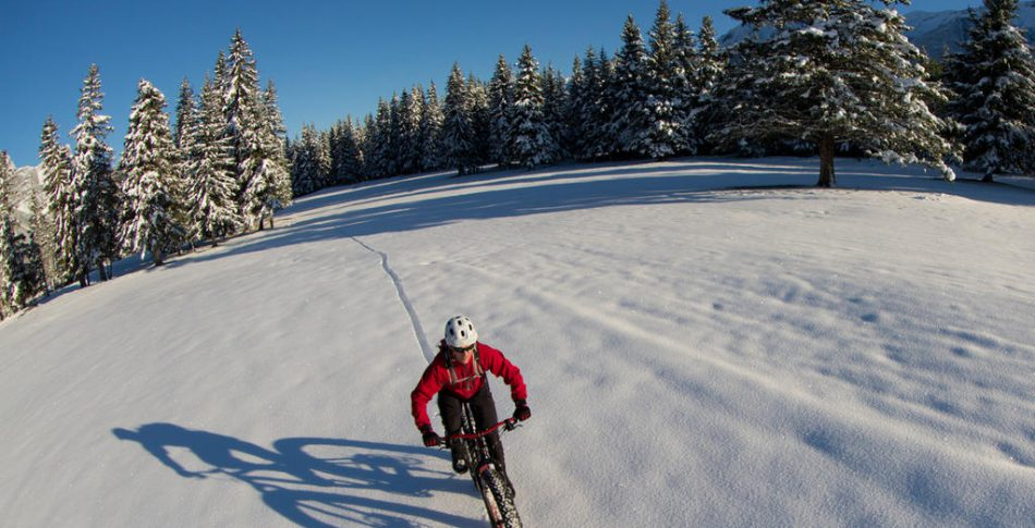 10 tips på hur du överlever vintern!