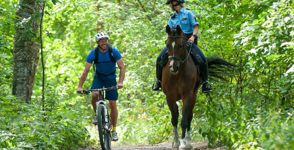 Cyklisten som kunde tala med hästar