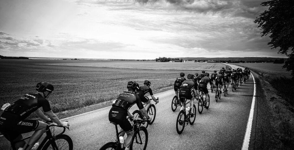 Vilken typ av cyklist är du?