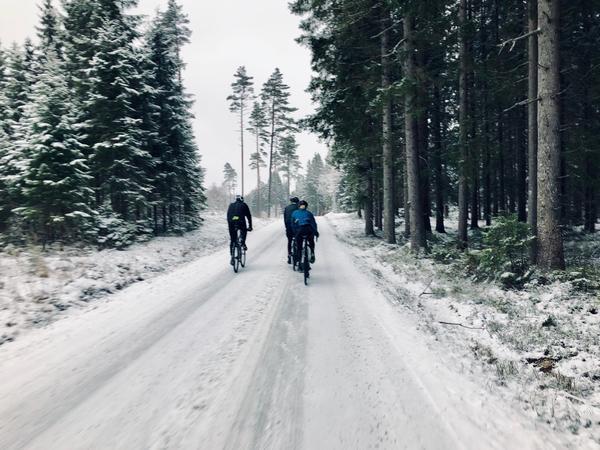 vinter distans